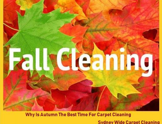 Why Is Autumn The Best Time For Carpet Cleaning?
